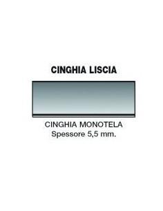 Cinghia Liscia